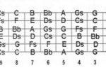 Notas diapasón de la guitarra